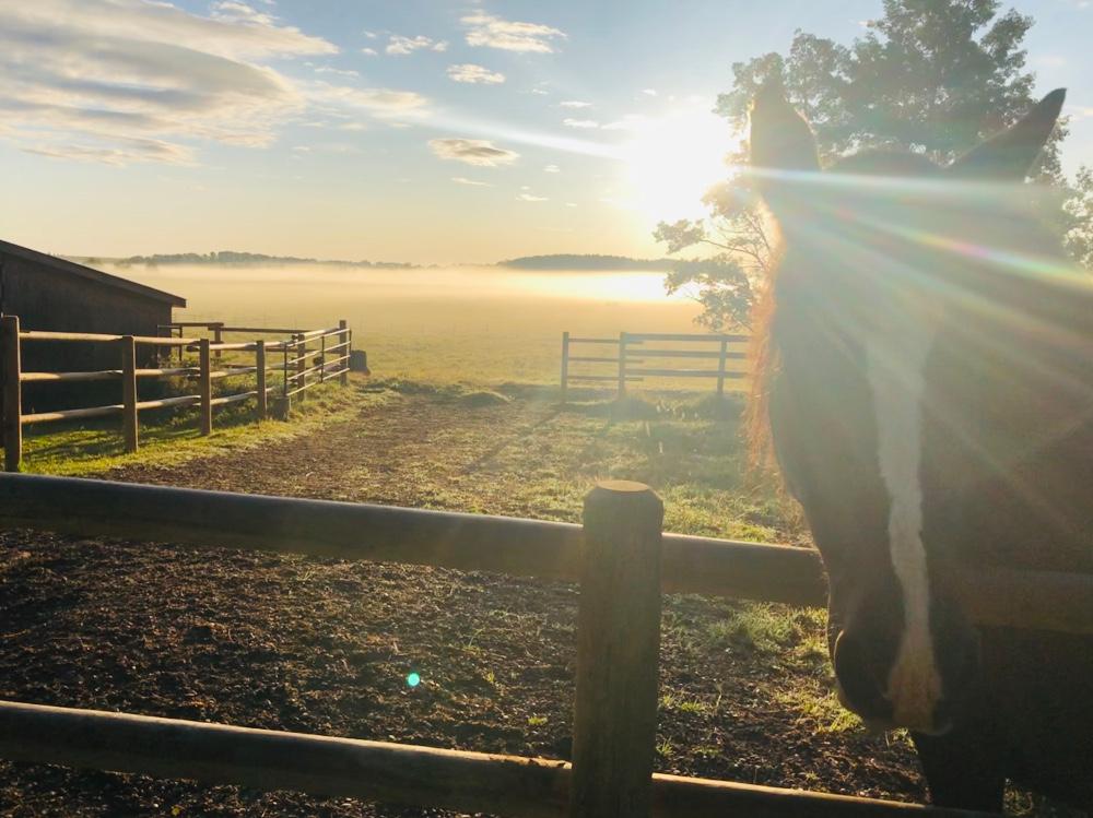 Herbst auf der Ranch